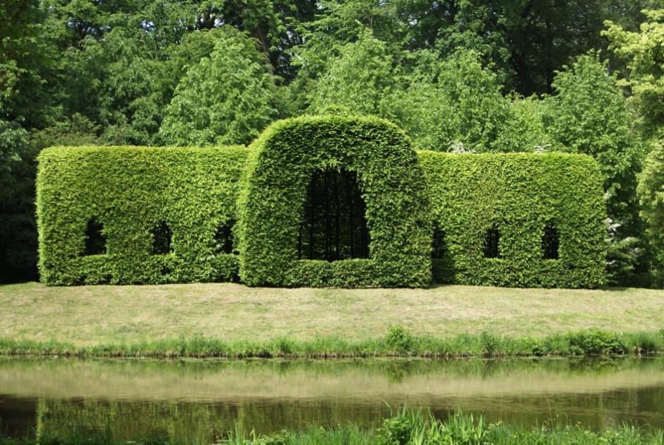 Groene Afscheiding Tuin : Groene afscheiding voor je tuin wonen zo